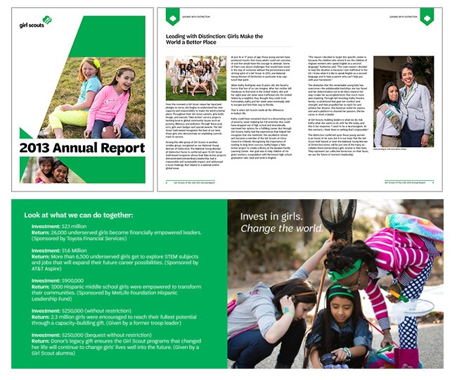 2013_gsannualreport_final